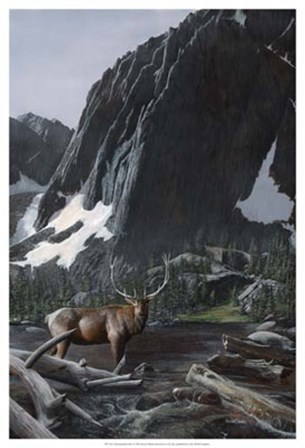 Mountainside Elk I by Kevin Daniel art print