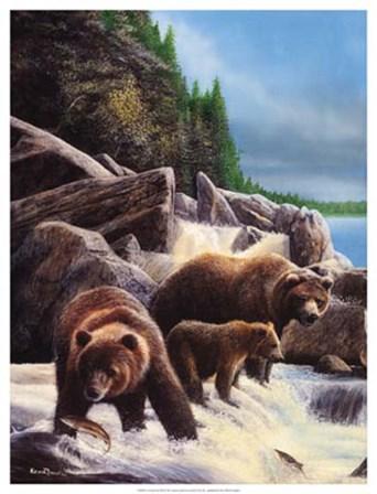Grizzlies by Falls by Kevin Daniel art print
