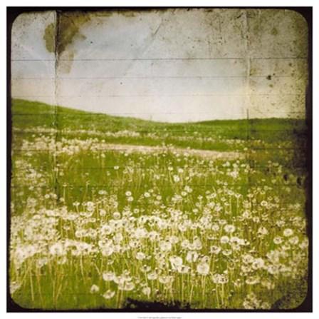 Field I by Ingrid Blixt art print