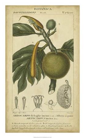 Exotic Botanica IV by Pierre Jean Francois Turpin art print