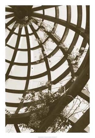 Pergola Basket by Meg Mccomb art print