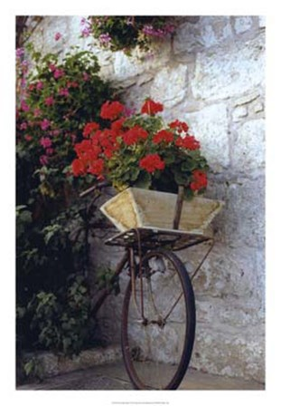Flower Box Bike by Meg Mccomb art print