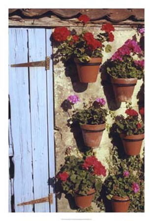 Geranium Wall by Meg Mccomb art print