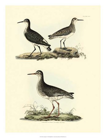 Sandpipers II by John Selby art print