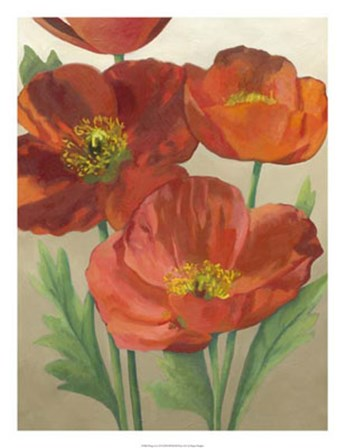 Poppy Love II by Megan Meagher art print
