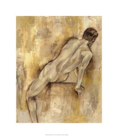 Nude Figure Study VI by Jennifer Goldberger art print