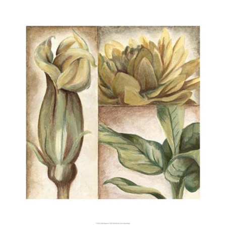 Garden Glimpses II by Megan Meagher art print