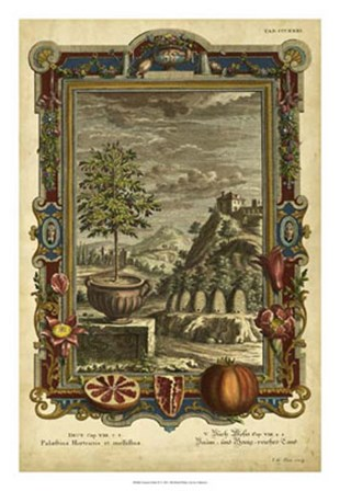 Genesis Fruits IV art print