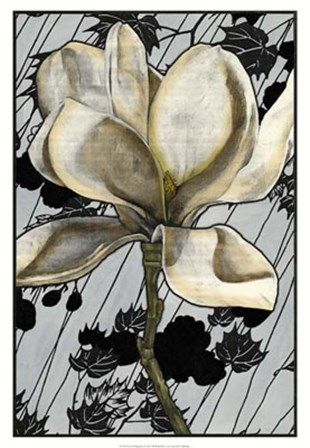 Patterned Magnolia I by Jennifer Goldberger art print