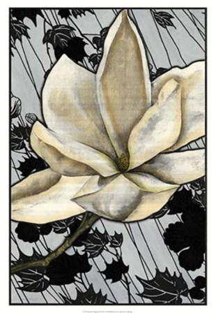 Patterned Magnolia II by Jennifer Goldberger art print