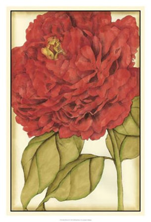 Ruby Blooms II by Jennifer Goldberger art print