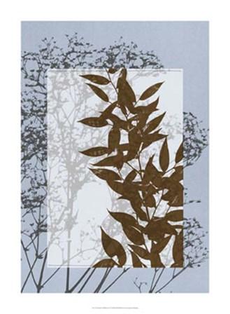 Translucent Wildflowers VI by Jennifer Goldberger art print