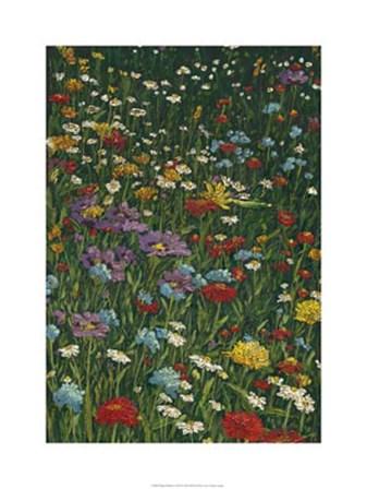Bright Wildflower Field II by Megan Meagher art print