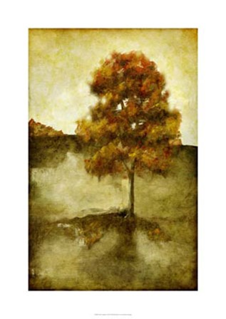 Sunset Solitude I by Jennifer Goldberger art print