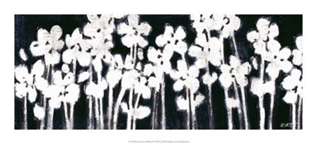 White Flowers on Black II by Norman Wyatt Jr. art print