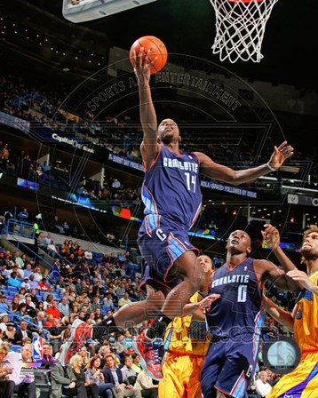 Michael Kidd-Gilchrist 2012-13 Action art print