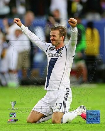 David Beckham Celebrates Winning the 2012 MLS Cup art print