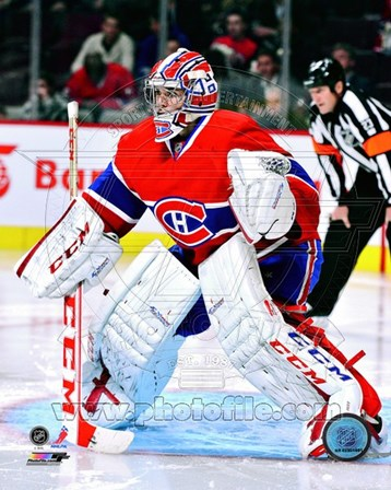 Carey Price 2012-13 Action art print