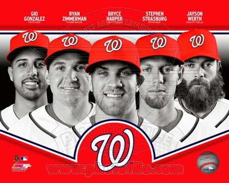 Washington Nationals 2013 Team Composite art print