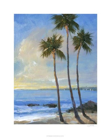 Tropical Breeze II by Timothy O'Toole art print