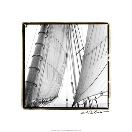 Under Sail II by Laura Denardo art print