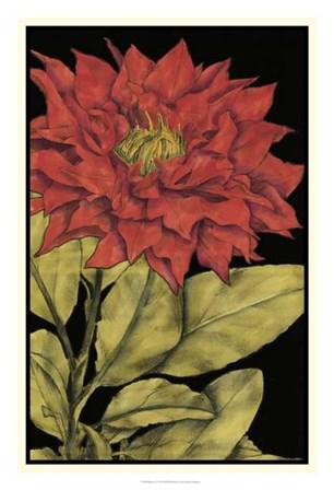 Radiance I by Jennifer Goldberger art print