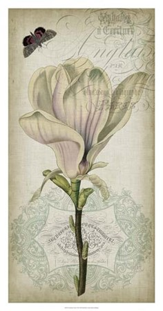 Cartouche & Floral I by Jennifer Goldberger art print