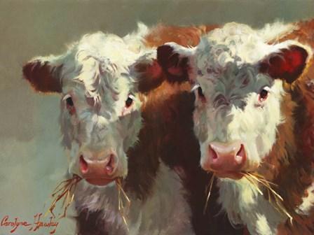 Cow Belles by Carolyne Hawley art print
