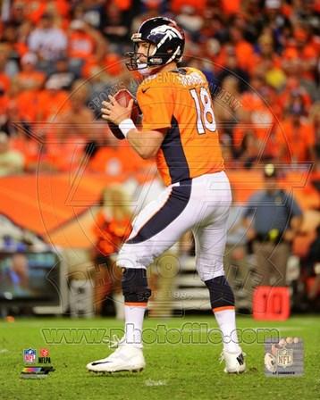 Peyton Manning 2014 Football Action art print