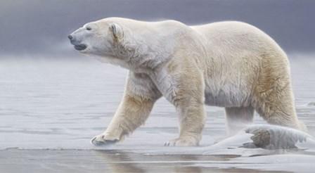 Arctic Icon by Daniel Smith art print