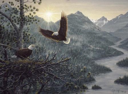 Eagles Nest by Jeff Tift art print