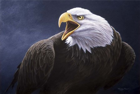 Cry Of The Eagle by Dr. Jeremy Paul art print