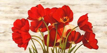 French Tulips by Serena Biffi art print