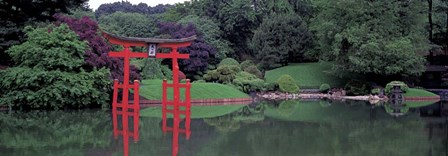 Japanese Garden by Richard Berenholtz art print