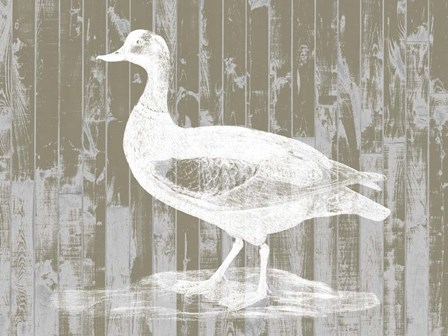 Woodgrain Fowl II by Jennifer Goldberger art print