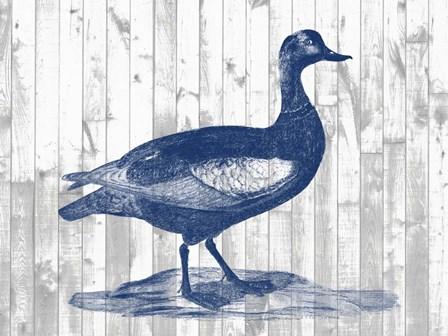Woodgrain Fowl IV by Jennifer Goldberger art print