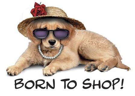 Shop Pup by Art Brands art print