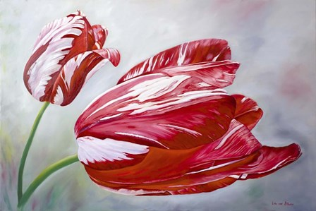 English Tulips by Lily van Bienen art print