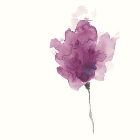 Expressive Blooms I by June Erica Vess art print