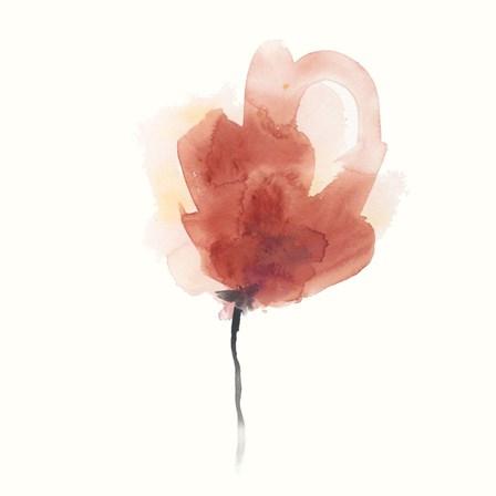 Expressive Blooms III by June Erica Vess art print