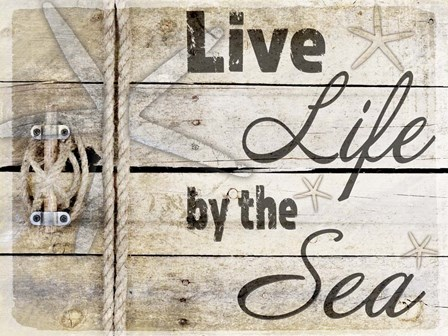 Country Sea Sign 3 by LightBoxJournal art print