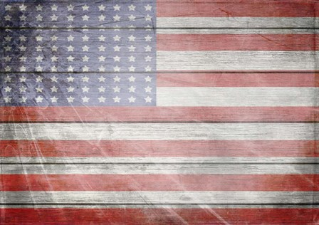 American Freedom Collection 1 by LightBoxJournal art print