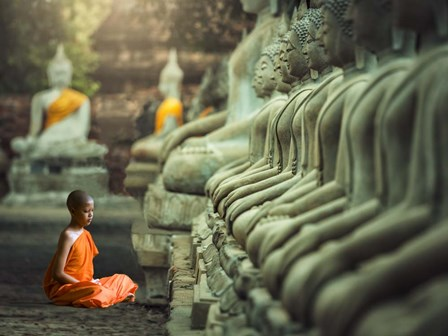 Young Buddhist Monk praying, Thailand by Pangea Images art print