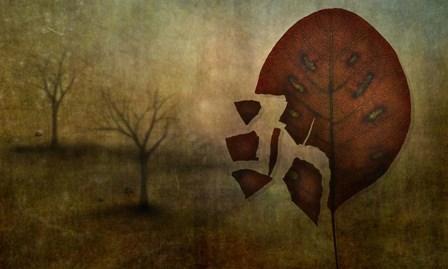 Autumn by Lotte Andersen art print
