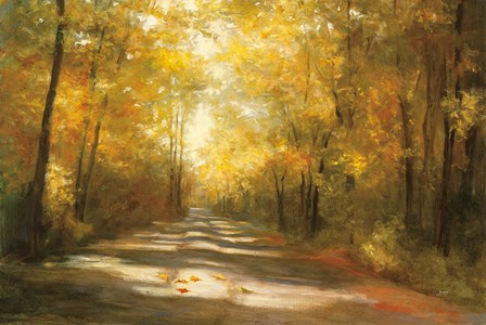 Gap Road by Julia Purinton art print