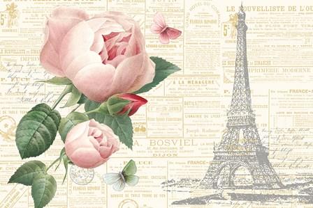 Roses in Paris II by Katie Pertiet art print