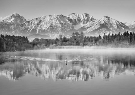 Allgaeu Alps and Hopfensee lake, Bavaria, Germany (BW) by Frank Krahmer art print