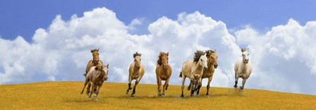 Herd of Wild Horses (detail) by Pangea Images art print