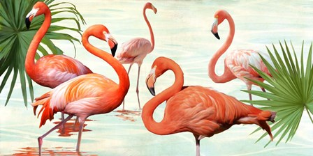 Flamingos by Teo Rizzardi art print