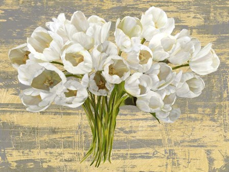 Washed Tulips (Ash & Gold) by Leonardo Sanna art print